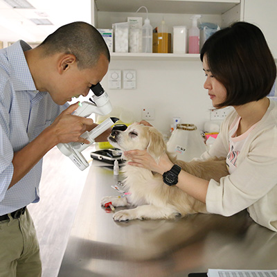 Caring professionals with a dog